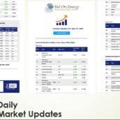 Daily Energy Markets